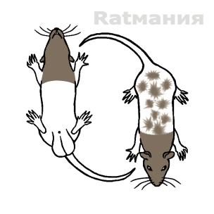 Variegated/Пятнистый